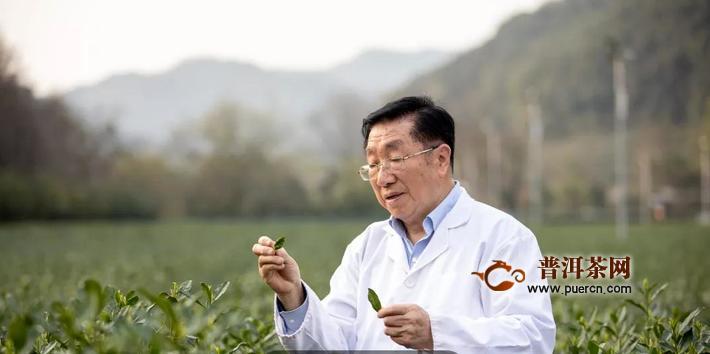 杭州陈宗懋获国家科学技术进步奖