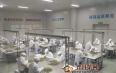 川茶大区域品牌天府龙芽实力领衔 加速推进川茶产业创新升级