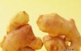 生姜蜂蜜水的功效与作用