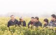 茶叶专家来嵊考察茶叶新品种