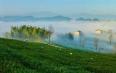 2019年新昌茶叶产业链产值达到86.2亿元