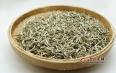 白毫银针属于绿茶吗?