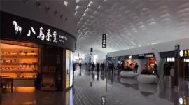 迂回生产博弈论:中国名茶的品牌化路径