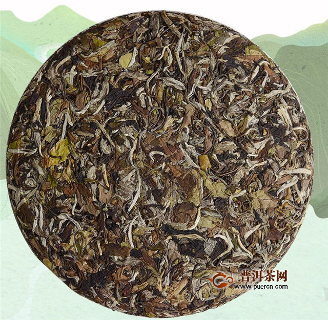 老白茶与普洱收藏原则