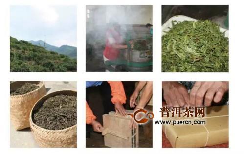 决定黑茶品质好坏的两个因素:好原料与好工艺!