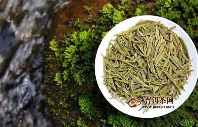 白茶和黄茶哪个发酵程度高