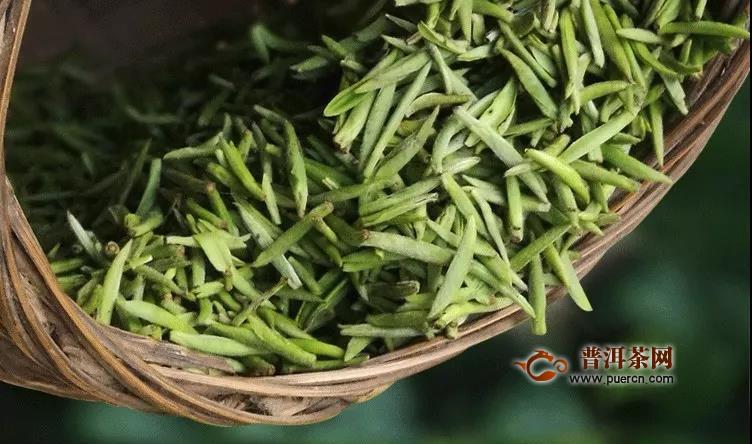 雅安市2020年首批春茶开始采摘