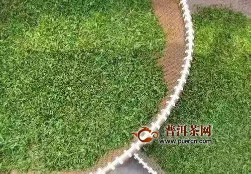 松阳出台《茶产业复工及疫情防控工作方案》