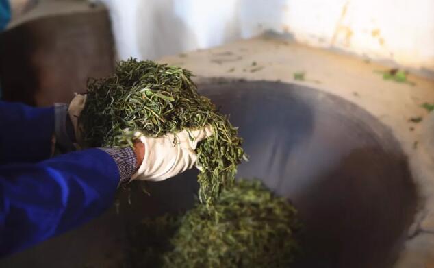 普洱茶市场增长机会在哪?瞄准大众品饮市场!