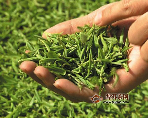 浙江龙井茶力争到2020年产值达80亿元