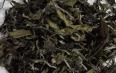八马茶业白牡丹茶饼