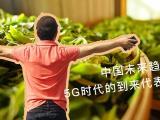洪普号第26期视频解说:中国未来趋势04  信息对称的时代来临