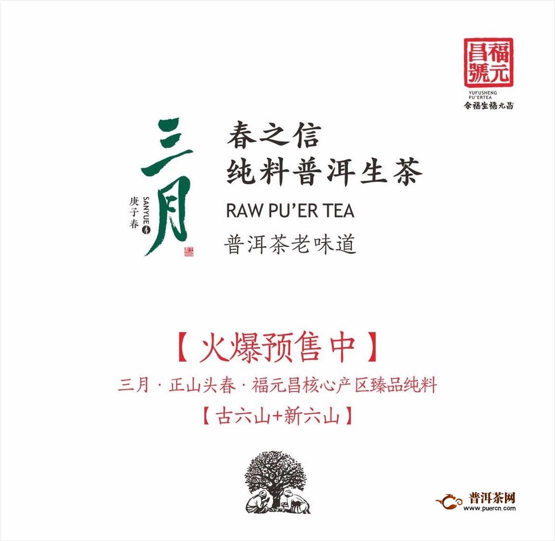 福元昌2020年春茶:【三月系列】 正式预售