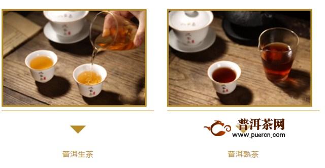 茶与健康 普洱生茶和熟茶到底适合哪一类人群
