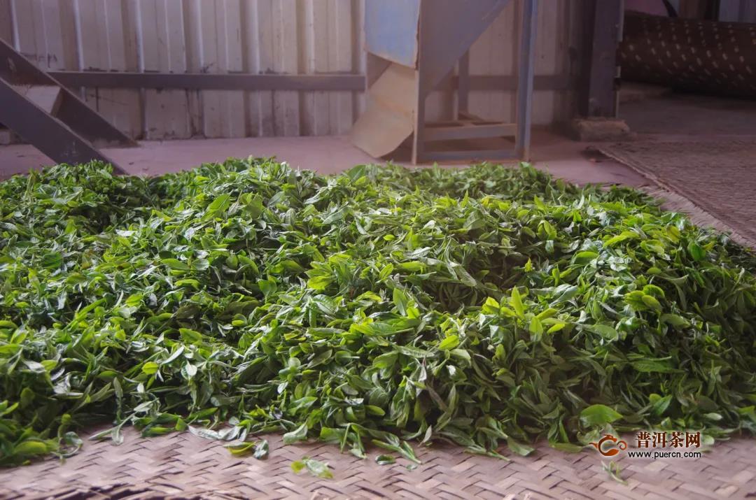 一球茶道学堂开课:全国茶产区分布