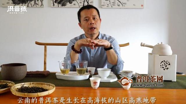洪普号茶山味道第32期:年有四季,茶有春夏秋冬!