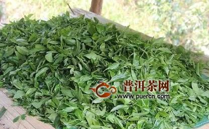 贵州首部茶叶绘本带你穿梭700万亩中国最大茶园