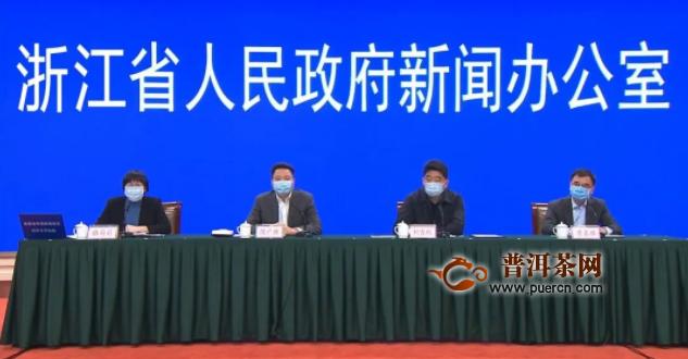 松阳县:全县连续开采早春茶叶140