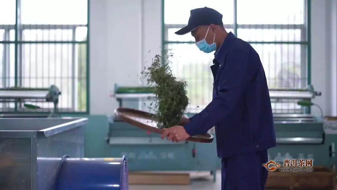 新冠肺炎疫情对浙江省茶产业的影响及应对建议