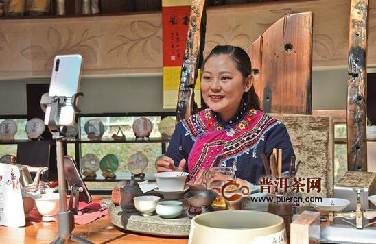 """昌宁:危中寻机""""备战""""春茶"""