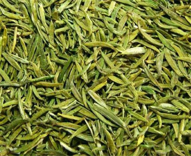 陕茶280余万亩春茶陆续采摘上市