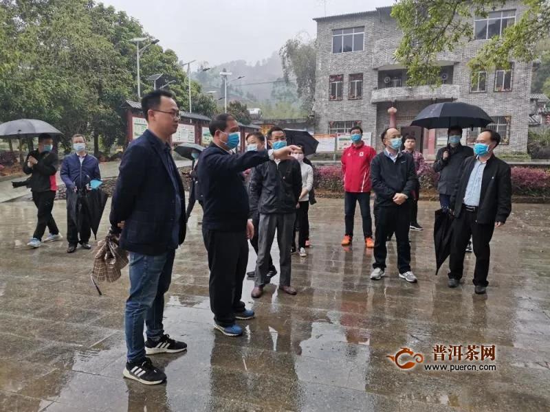 梧州市委书记全桂寿到六堡镇调研