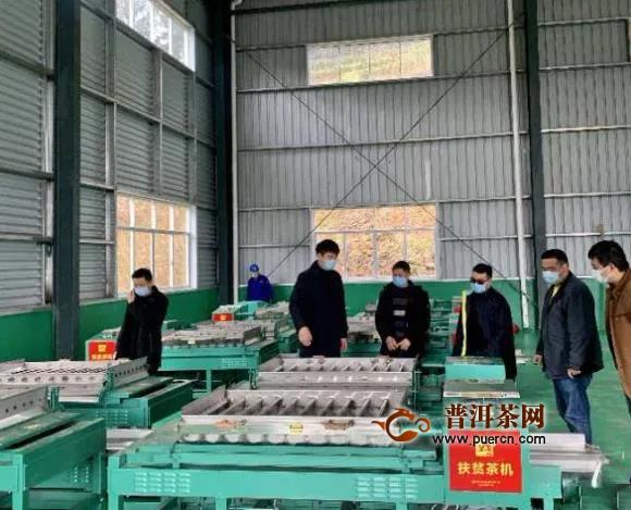 先捐茶苗再捐茶机,浙江安吉产业扶贫助农增收