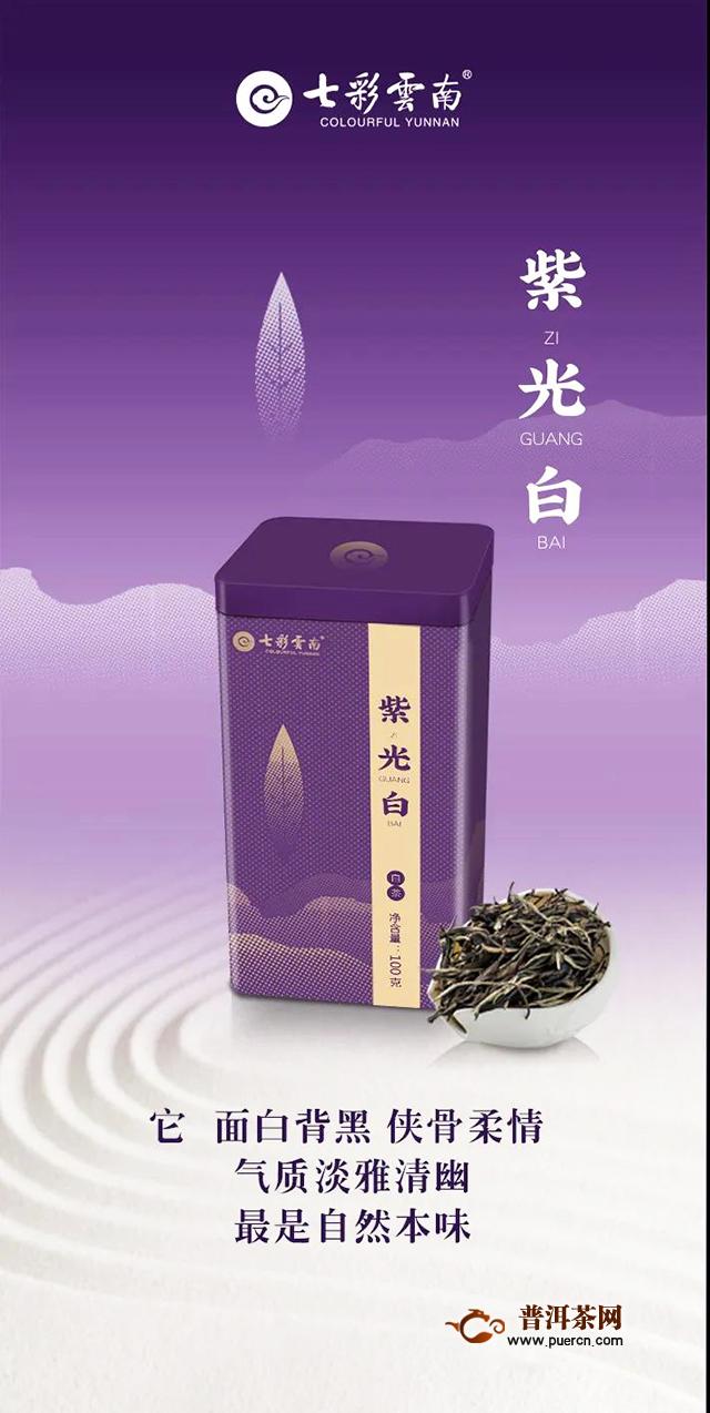 昆明七彩云南庆沣祥茶业新品紫光白即将上市