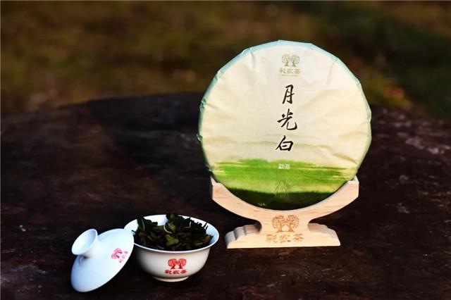 彩农茶:奇香月光白,品不尽的清雅曼妙