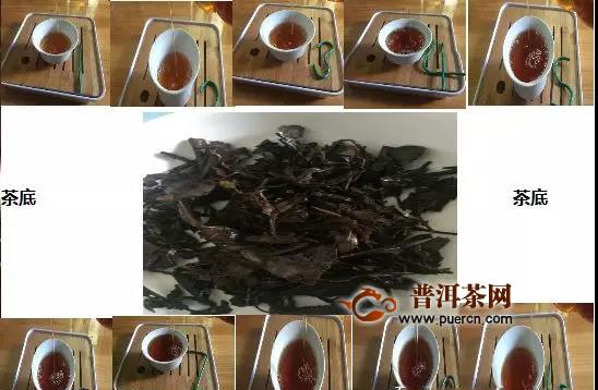 1998年霜降生晒六堡茶农家生态老茶婆砖品鉴报告