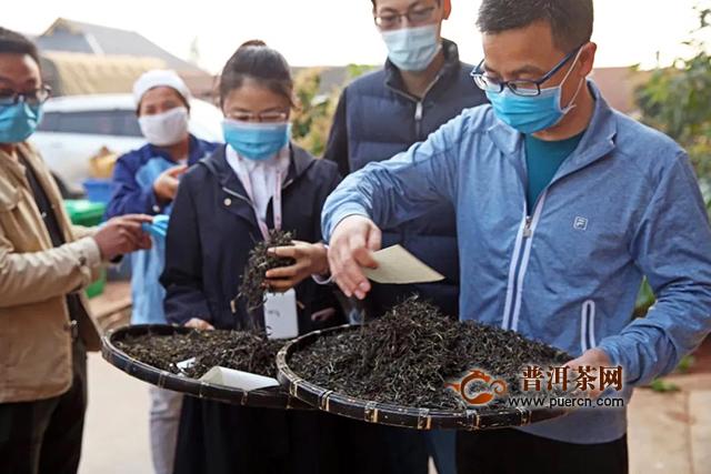 """大益2020年春茶原料收购正式启动,10位""""优秀供应商""""被表彰"""