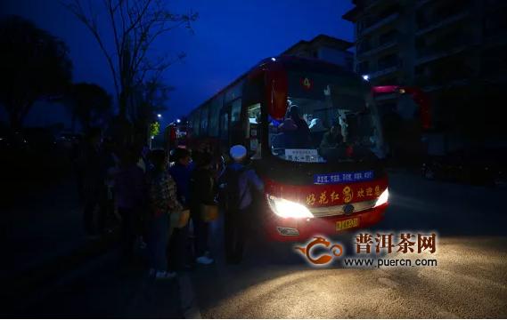 贵州惠水:长岩茶园风光美 群众采摘春茶忙