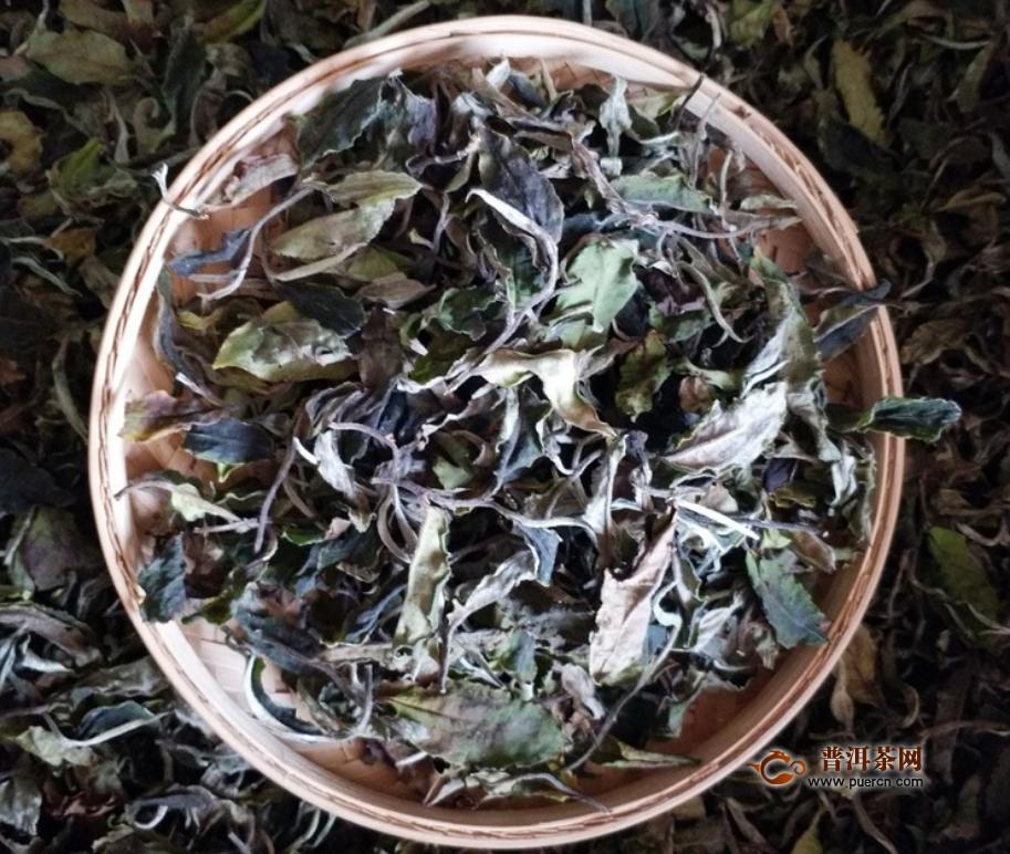 福鼎白茶寿眉保质期