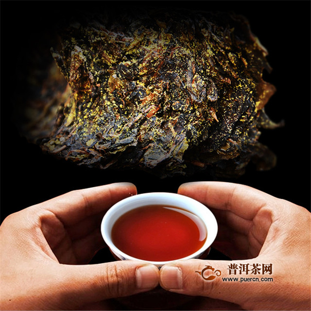 泾阳茯茶属于红茶吗