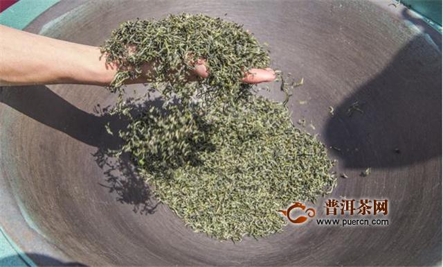 碧螺春属于红茶还是青茶