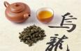 乌龙茶属于绿茶吗