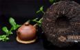 乌龙茶属于熟茶吗