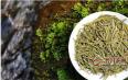 君山银针属于绿茶吗?其加工工艺能给我们明确的答案!