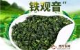 安溪铁观音属于绿茶吗?