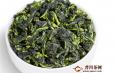 铁观音不属于绿茶吗?有什么区别?