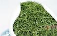 岳西翠兰是什么茶属于绿茶吗