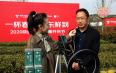 汉中仙毫春茶开采上市 媒体+电商+直播助力销售
