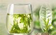 冲绿茶的水温,泡绿茶水温为什么不能太高?