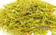 保靖黄金茶属于绿茶吗