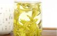 沩山毛尖属于绿茶吗