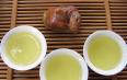 铁观音属红茶还是绿茶