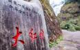 中国最贵的树——福建武夷山的母树大红袍