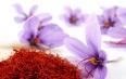 藏红花对女人的功效与作用及禁忌