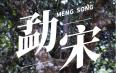 直播预告:芒嘎拉古茶茶山直播第二站——勐宋古茶山