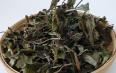 福鼎白茶寿眉多少钱一斤